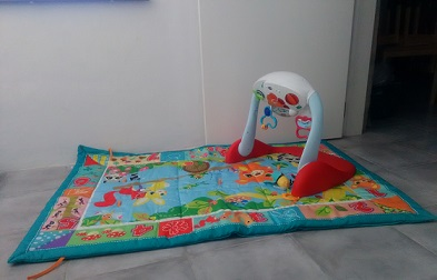 <b>Activity play mat-Model B</b>